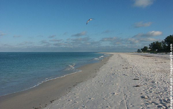 Beach at Florida's West Coast
