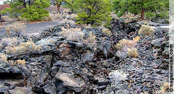 Sunset Crater Volcano: Nature slowly rediscovers the lava fields.