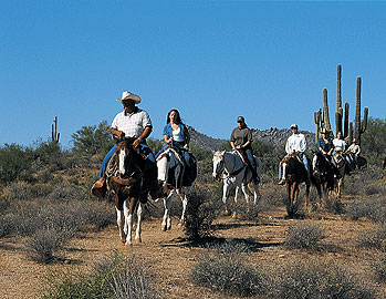 With more than 330 days of sunshine a year, Scottsdale, Arizona is the perfect playground to indulge in your favorite adventure - horseback riding being one of many adventures.