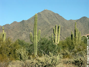 The McDowell Mountain foothills