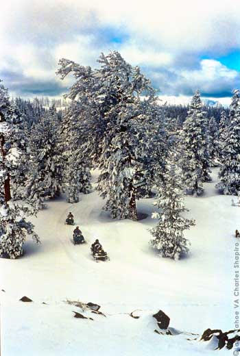 Snowmobile Tours to the top of Tahoe