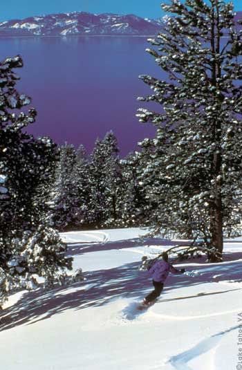 Lake Tahoe is famous for amazing Tree-skiing