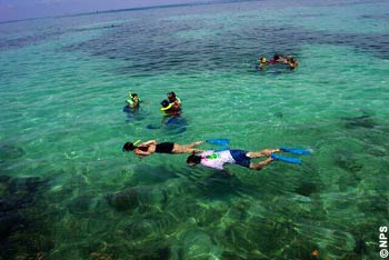 Visitors enjoy the views underwater snorkeling at Dry Tortugas National Park.