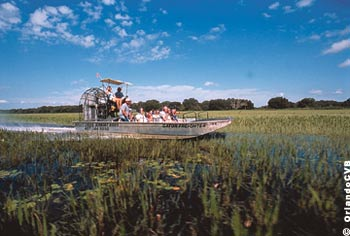 See the natural side of Florida on an airboat tour of Central Florida's wildlife