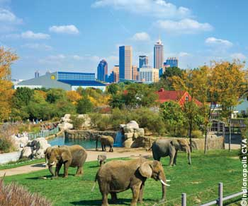The Indianapolis Zoo is the nation's only accredited combined zoo, aquarium and botanical garden.