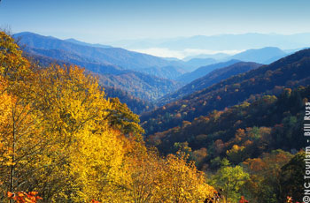 Part of the Great Smoky Mountains National Park, Newfound Gap offers breathtaking beauty whether on a scenic drive or enjoying a quiet hike