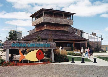 The Ocean Life Center is located in Historic Gardner's Basin. Visitors will find seven exhibit tanks ranging from 160 to 23,500 gallons, sea life touch tanks, computer kiosks, interactive software relating to the local and global marine environment and a second floor lecture room with the capabilities of teleconferencing and virtual classroom activities.