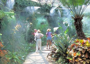 San Antonio Botanical Gardens Events Travel Explore Usa San Antonio San Antonio San Antonio