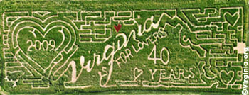 The world's only Virginia is for Lovers corn maze debuted in Fauquier County In September of 2008