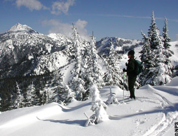 Hurricane Ridge is popular for activities like skiing or snowshoe hiking.